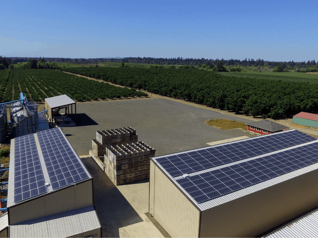 Above view of chapin dehydrator in salem solar PV farm array