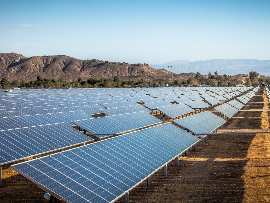 rows of solar panel arrays