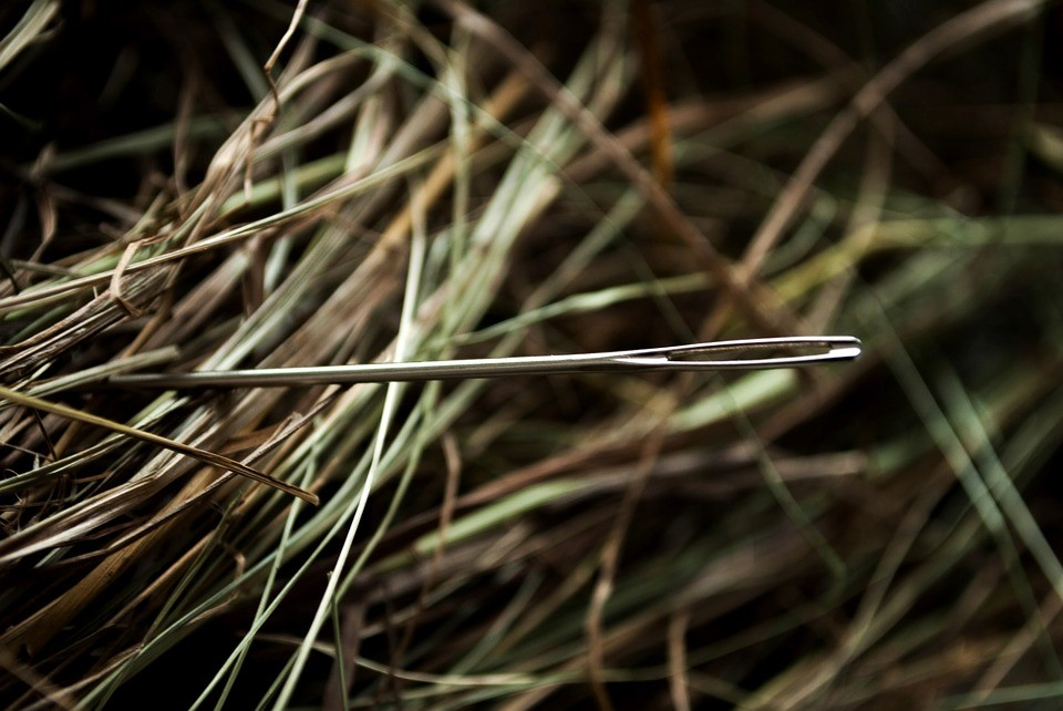 Needle in a Haystack