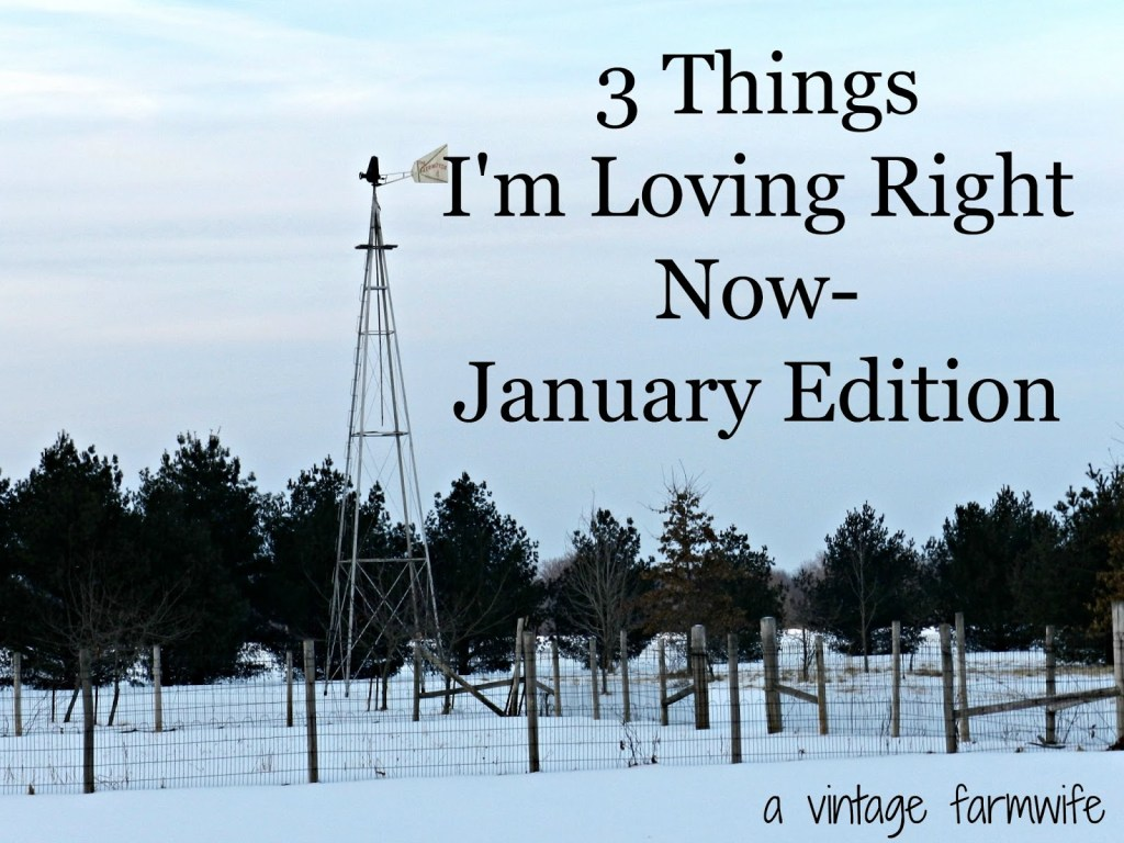 3 things I'm loving in January