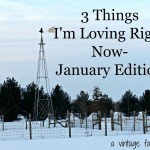 Favorite Things I'm Loving in January