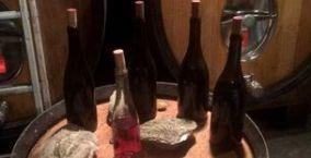 vins-chais-oeuvre-bourgogne