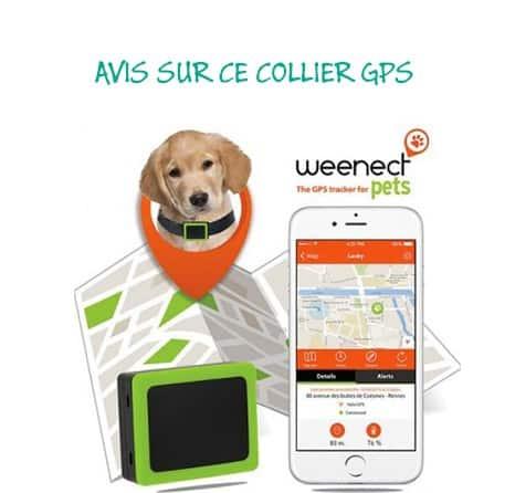 Weenect Pets – Le boitier GPS pour chien