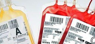 sacche sangue donato