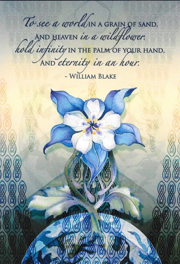 Heaven In A Wildflower Birthday Cardfit600879ssl1