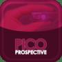 PicoPerspectives