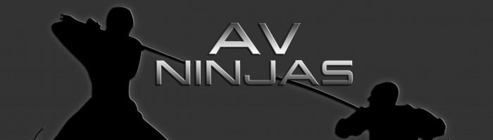 cropped-avninjas-header5.jpg