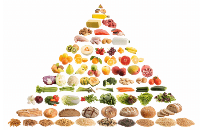 Food Pyramid for Standard American Diet SAD