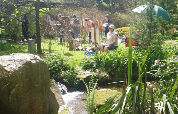 Students capture the waters light and movement with Rod Coyne at Knockanree Gardens.