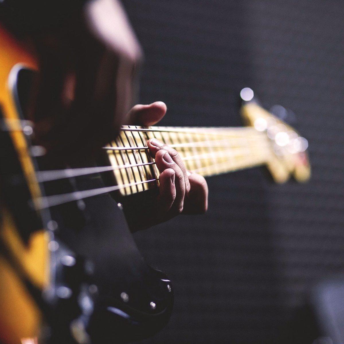 Secteur de la musique - musicien guitariste