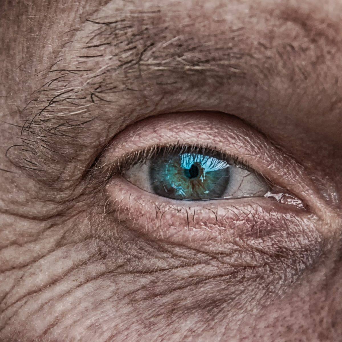 oeil d'une personne âgée et succession d'une personne agée