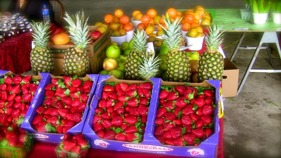 Fresh Market Kissimmee Fl