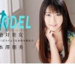 本澤朋美 モデルコレクション ポップ