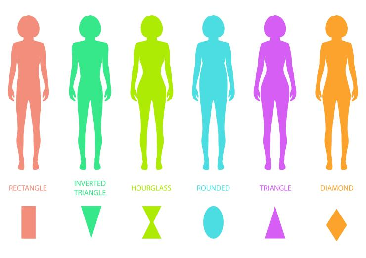 illustration of female body types: rectangle, inverted triangle, hourglass, rounded, triangle, diamond