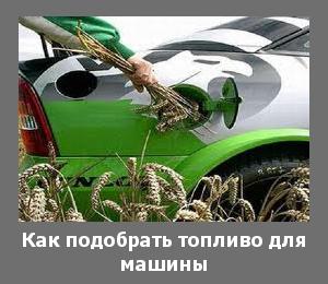 топливо для автомобиля