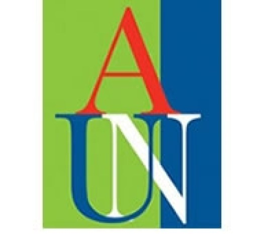 American University of Nigeria Courses