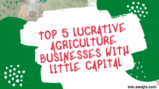 Lucrative Agriculture Businesses with Little Capital