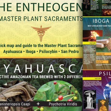 Entheogens: Master Plant Sacraments