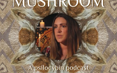 Meet me in the Mushroom with Cathy Coyle