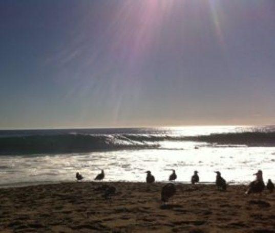 Pic by Amy Smith ~ a Zuma Beach view