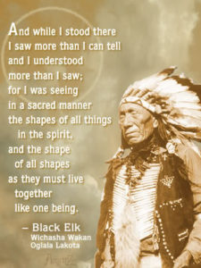 And while I stood there I saw more than I can tell and understand more than I saw; for I was seeing in a sacred manner the shapes of all things in the spirit, and the shape of all shapes as they live together like one being. - Black Elk Wichasha Wakan Oglala Lakota