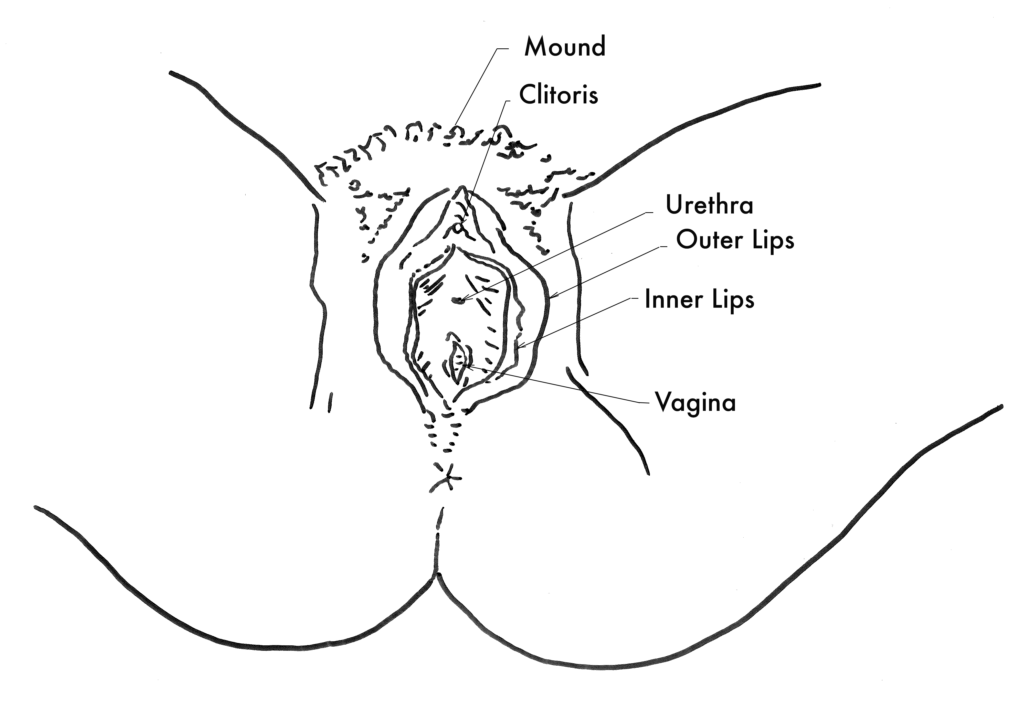 Think, vagina middle aged wife photos