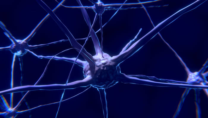 Brain Researchers Find 'Cocaine Circuit' Key in Relapse