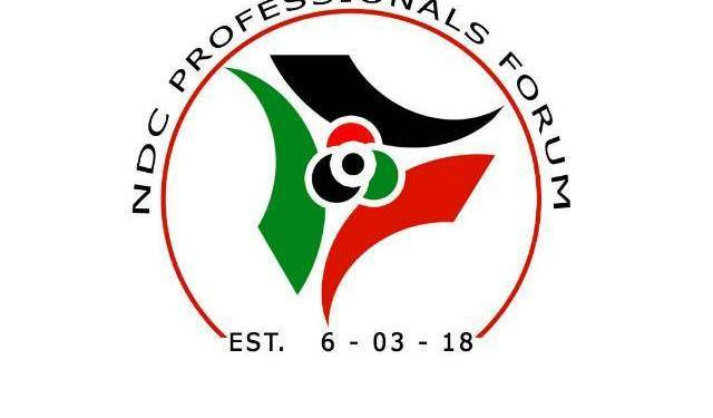 NDC Professional Forum