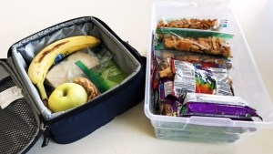 School Lunch, School Lunch made Easy, Organization, Organized snacks
