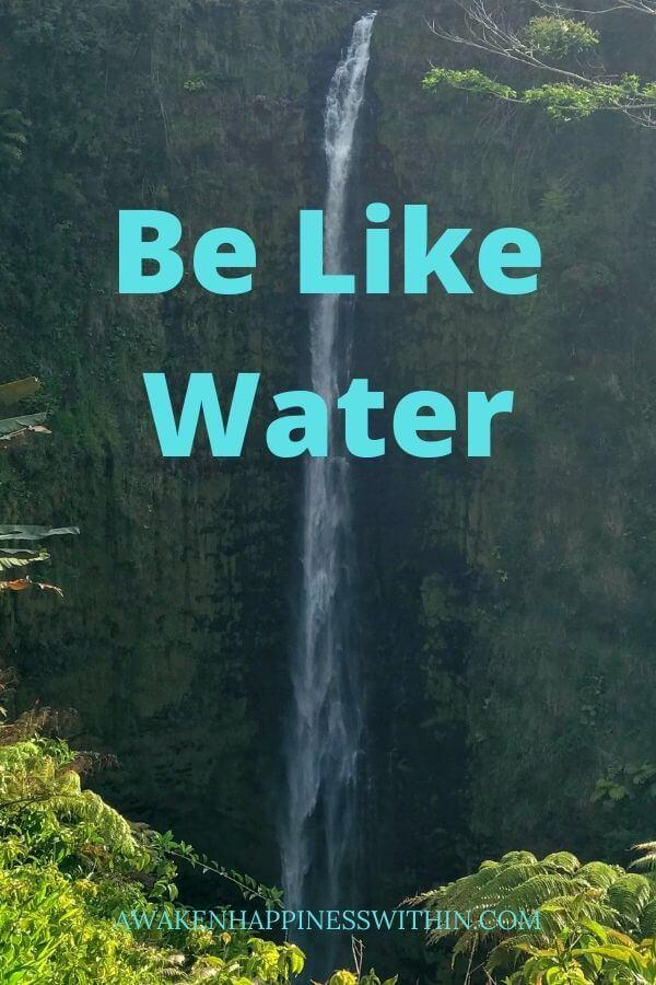 Be Like Water, Wisdom