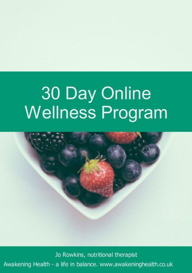 thumbnail of 30 Day Online Wellness Program