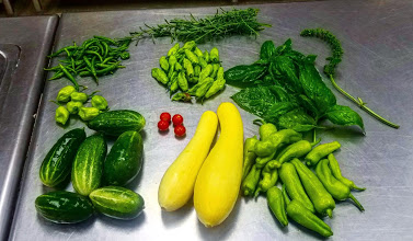 Early Harvest