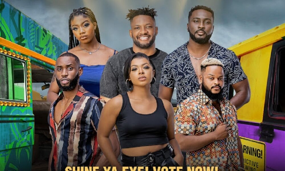 Here's how viewers voted for BBNaija's finale