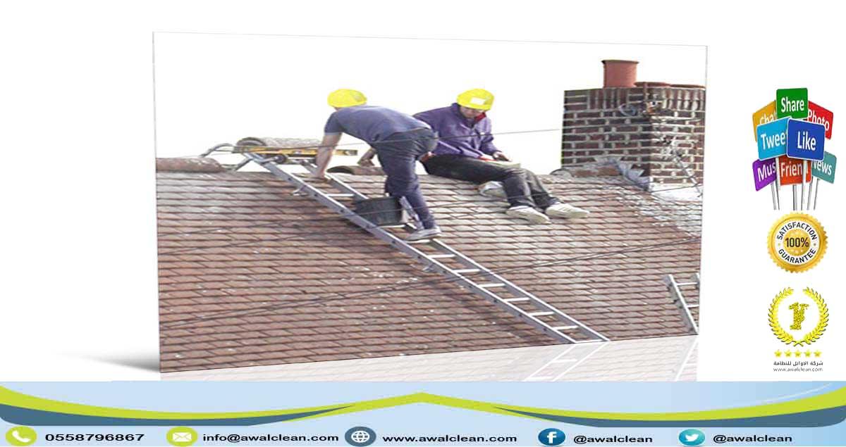 عمال يعزلون الاسطح