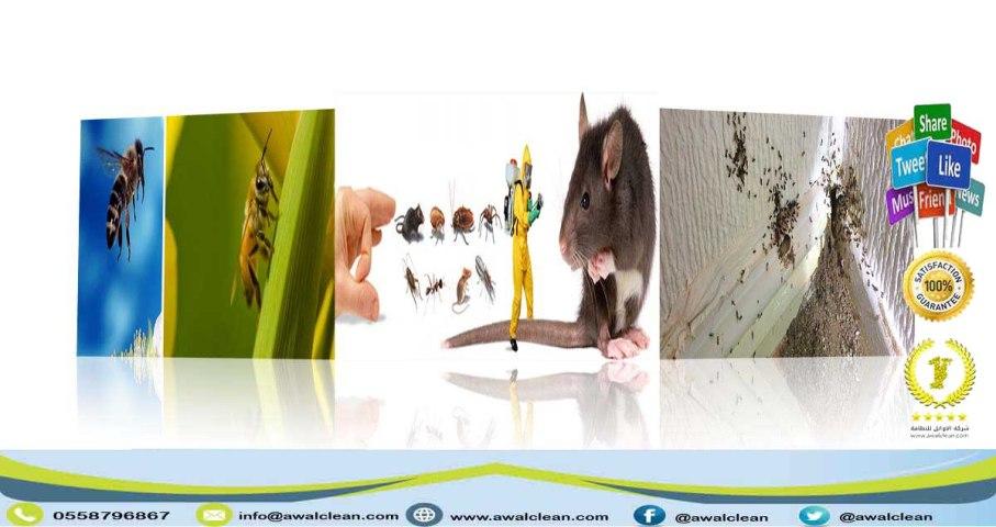 مجموعة من الحشرات و عامل رش