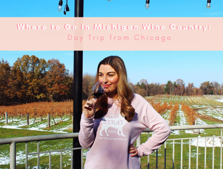 Where to Go in Michigan Wine Country: Day Trip from Chicago with Grape and Grain Tours