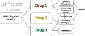 Path of analysis