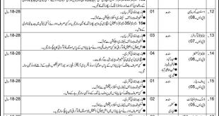 Information Department Sindh Jobs 2017