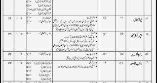bureau of immigration & overseas employment jobs 2017