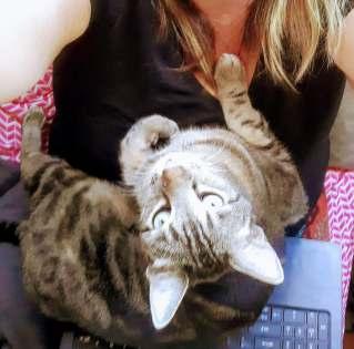 cat loves me,