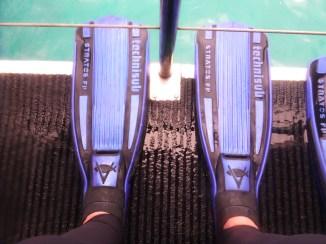 flippers feet