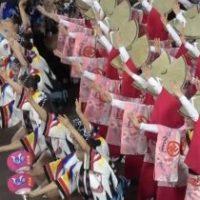 2016.8.13(土)蜂須賀連による藍場浜演舞場での流し踊りです。 2部 20:30開演 S指定新町川側/南 9列96番から撮影。