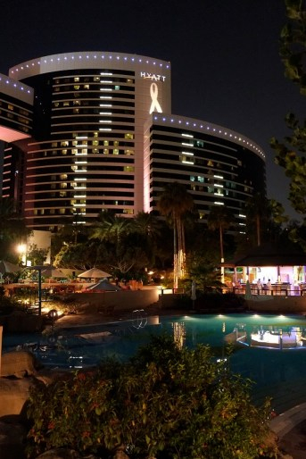 Night View of the Grand Hyatt Dubai