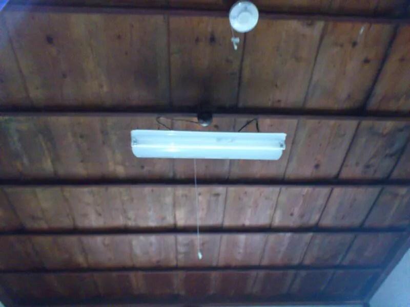 天井には蛍光灯