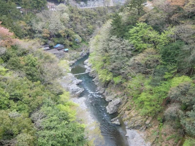 橋の上から1