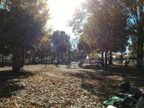 冬の舎人公園
