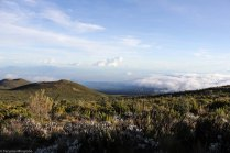 Kili Trek, Day 1