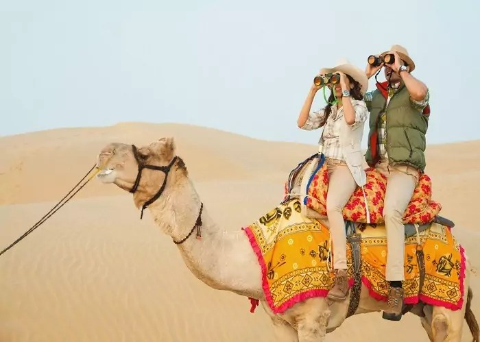 Camel Safari at Thar Desert Jaisalmer - What to Explore in Wonderful Golden City Jaisalmer