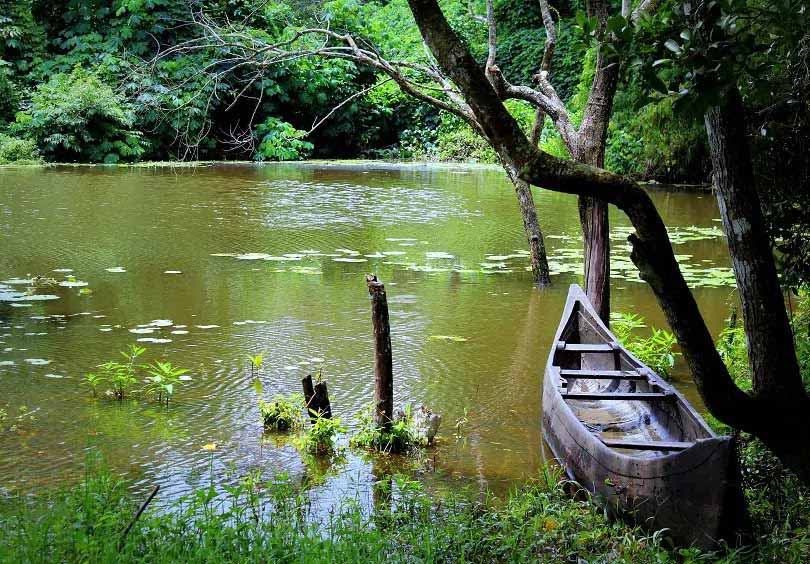 kerala05 - Fascinating landmarks that put Kerala on the Tourism Map
