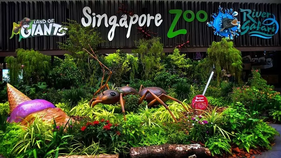 singapore3 - Top 5 Places you can't miss in Singapore